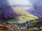 North Yorkshire Moors 2012