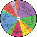 Flavour wheel 1